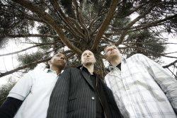 Tingvall Trio (DE/SWE) + David Helbock (AT) + vítěz ceny Jazzfruit